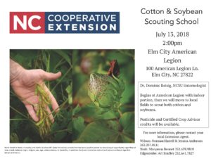 Cover photo for Cotton and Soybean Scouting School